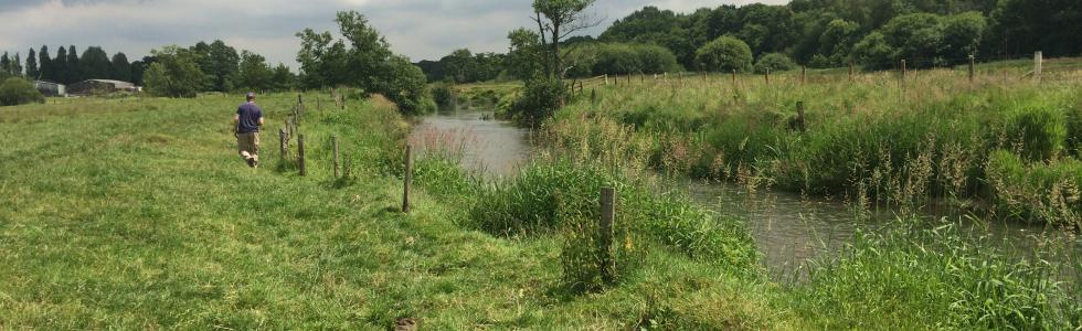 Fishery Habitat Enhancement Project ©