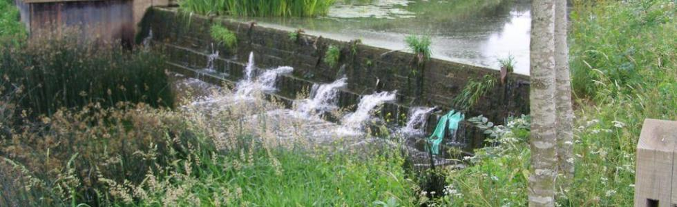 Catchment Issues ©